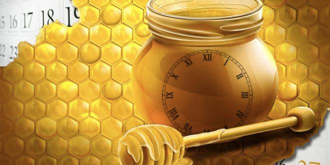 Trvanlivost medu 2000 let a více